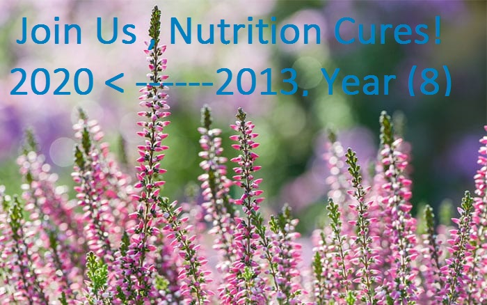 international nutrition in april 2013 to 2020